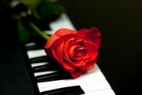любовь без приворота