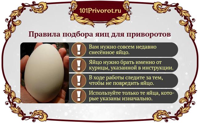 Подбор яиц